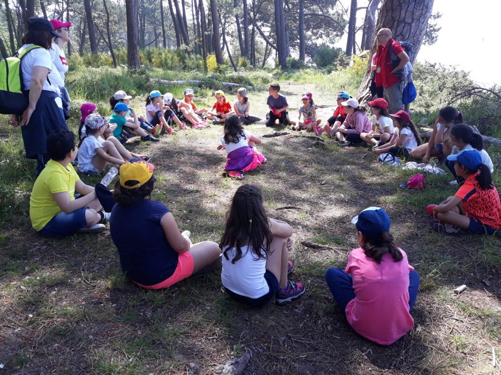 actividades educación primaria 2